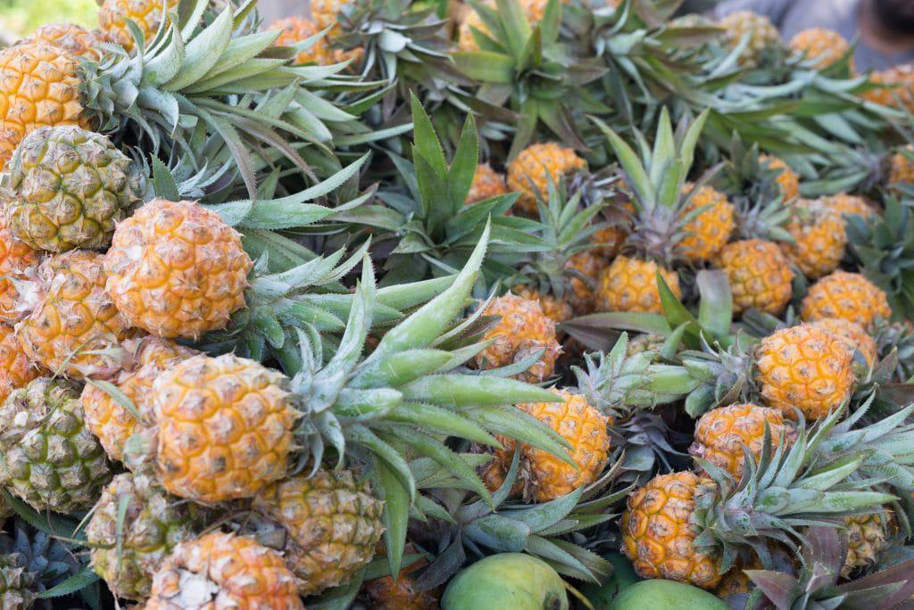victoria pineapples