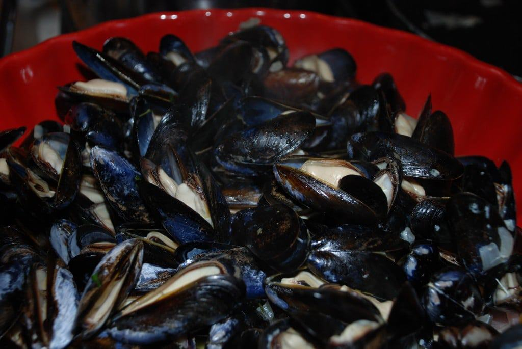 how to cook frozen mussels no shell