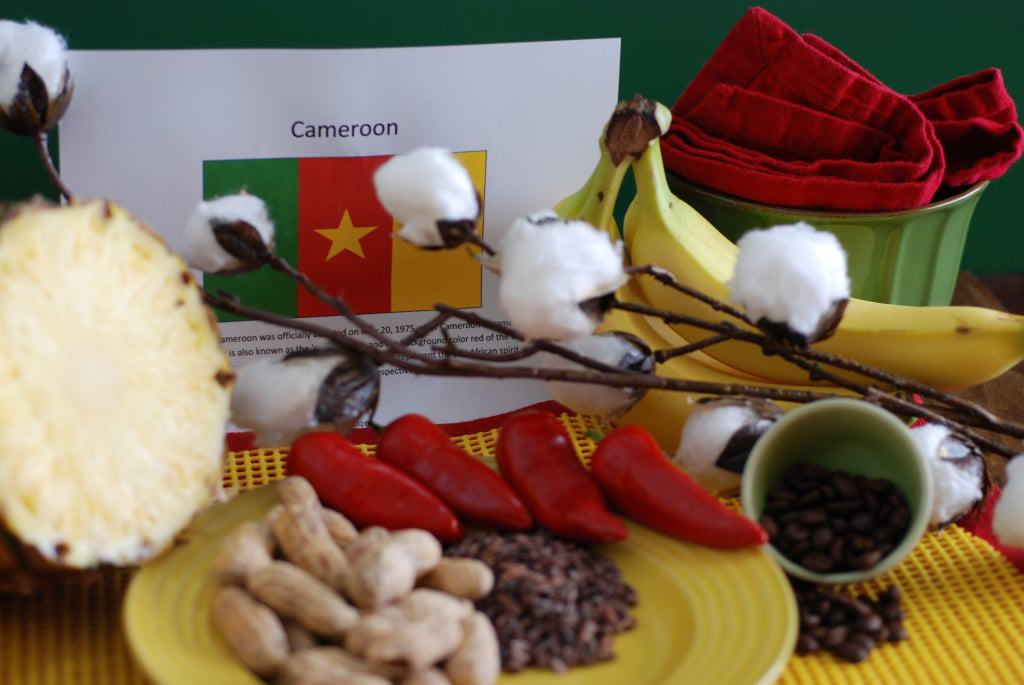 Journey to Cameroon