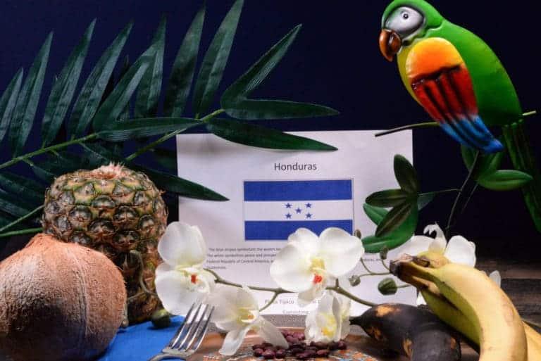 Our Journey to Honduras - International Cuisine