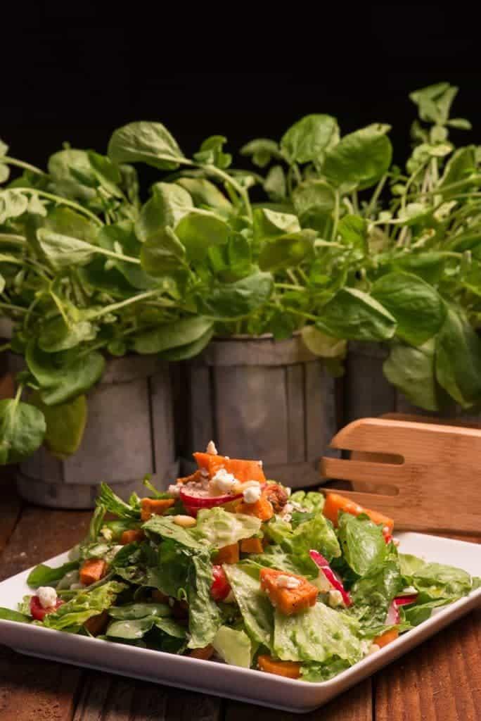 New Zealand Kumara salad