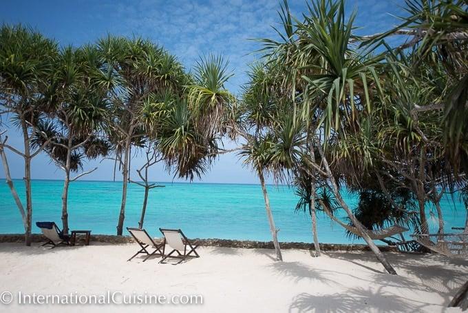 A picture of the turquoise and aqua water around Zanzibar