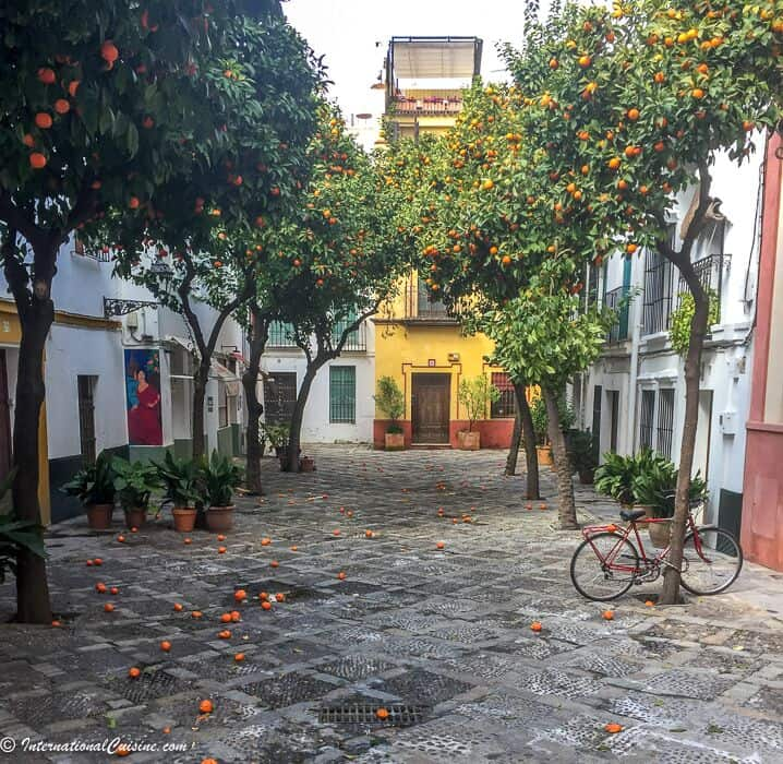 A courtyard filled with Seville Oranges